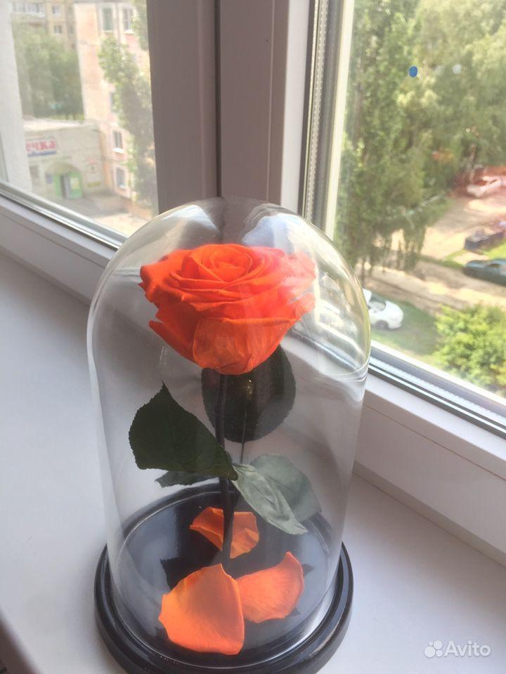 Роза в колбе купить на Зозу.ру - фотография № 2
