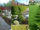Озеленение,услуги садовников