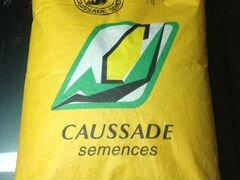 Семена Кукурузы (Гибриды )