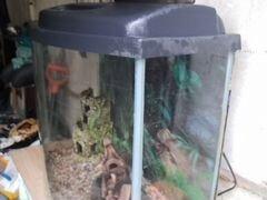 Аквариум акваэль 80 литр полный комплект