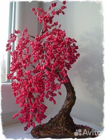 tsvetov-sakura-rastenie-kupit-spb-tsvetov