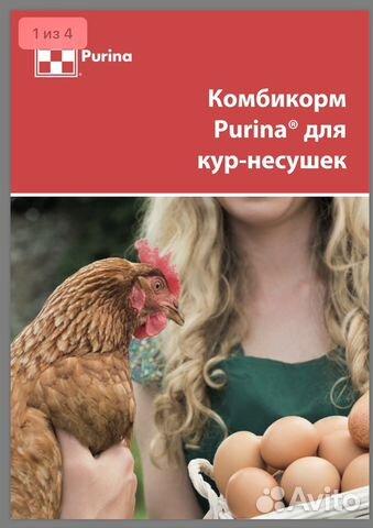 Комбикорм для несушек, яичных птиц Purina - 40 кг 89600500561 купить 1