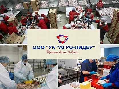 Работа в болхов работа от 16 лет в москве для девушек