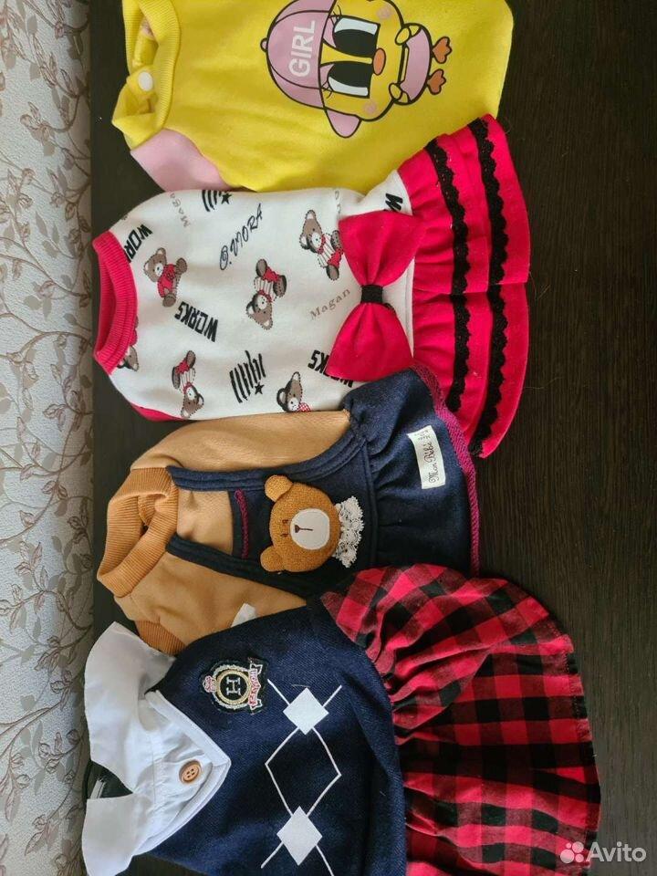 Одежда для собак  89141612677 купить 2